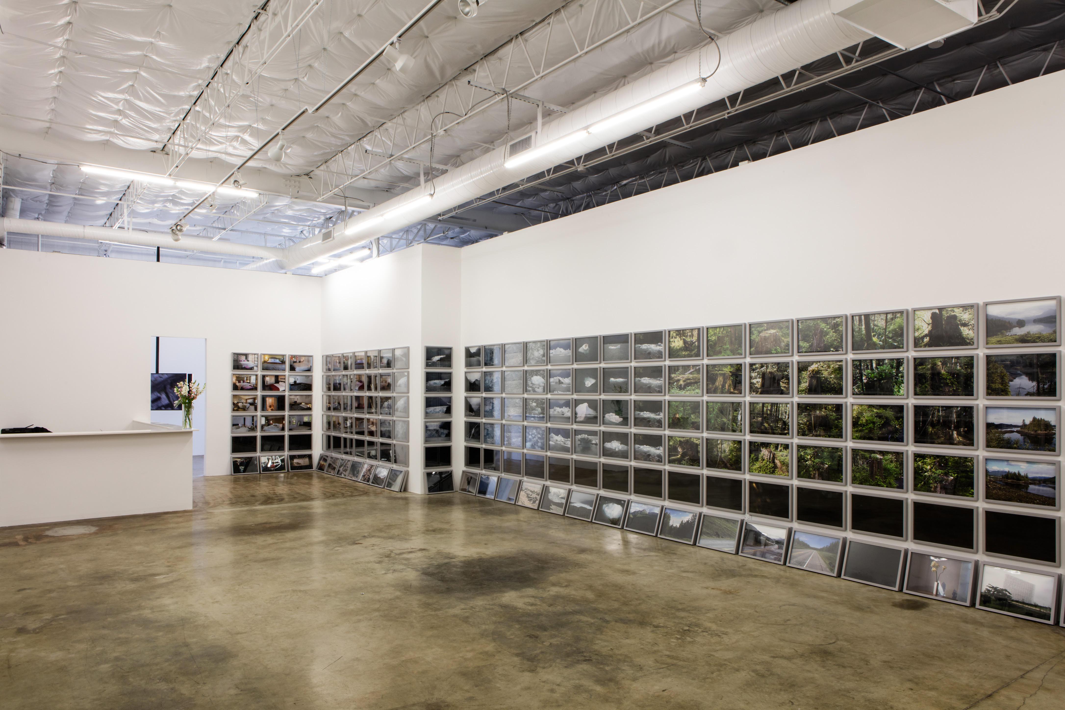 tenant spotlight liliana bloch art gallery dallas design district