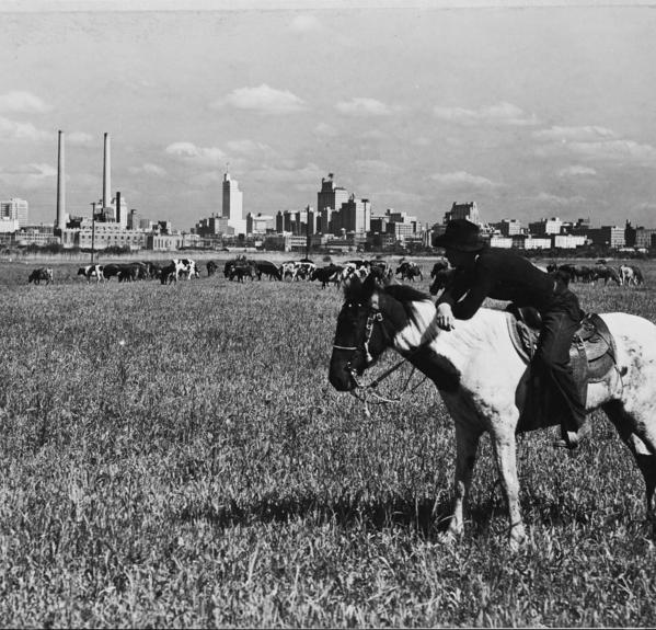 Then And Wow The Evolution Of The Dallas Design District Dallas